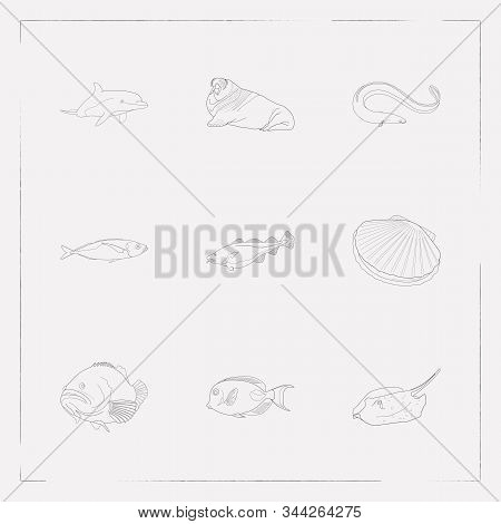 Set Of Seafood Icons Line Style Symbols With Atlantic Bottlenose Dolphin, Cod Fish, Flatfish And Oth