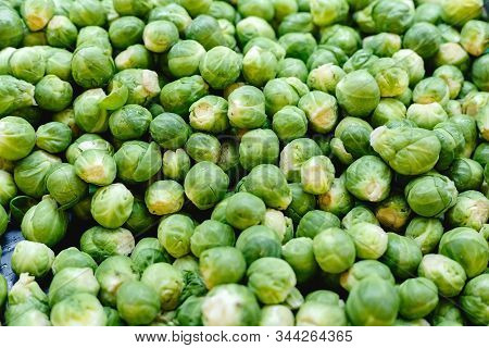 Fresh Raw Organic Uncooked Brussels Sprouts Vegetables For Sale At Farmers Market. Vegan Food And He