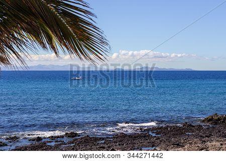 Rocky Coast Of Puerto Del Carmen At Canary Island Lanzarote, Spain With Lava Rocks ,  Palm Tree And