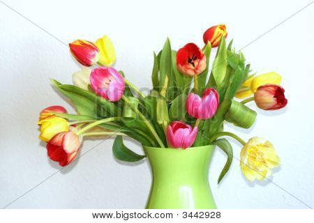 Boquet Of Tulips