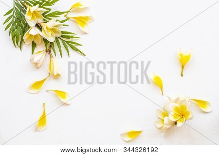 Yellow Flowers Frangipani Local Flora Of Asia Arrangement Flat Lay Postcard Style On Background Whit