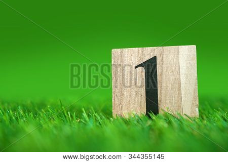 Number 1 (one) Symbol On A Wooden Cube Lying On A Green Grass