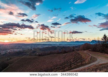 Winter sunset in the vineyard of Savorgnano, Friuli Venezia-Giulia, Italy poster