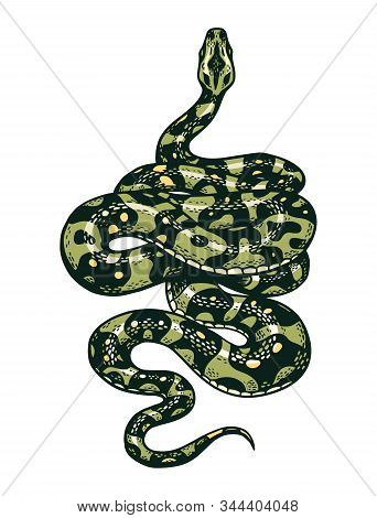 Snake In Vintage Style. Serpent Cobra Or Python Or Poisonous Viper. Engraved Hand Drawn Old Reptile