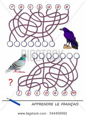 Learn French. Logic Puzzle Game With Cute Birds For Study French Language. Find Correct Places For L