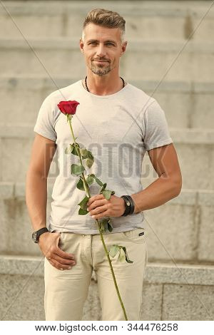 Happy Womens Day To All The Lovely Women. Bearded Man Holding Womens Day Flower In Spring. Handsome