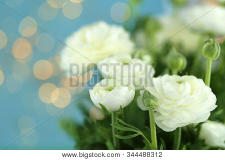 Ranunculus White Bouquet Close-up On A Blue Background With Golden Bokeh. Fresh White Ranunculus Wit
