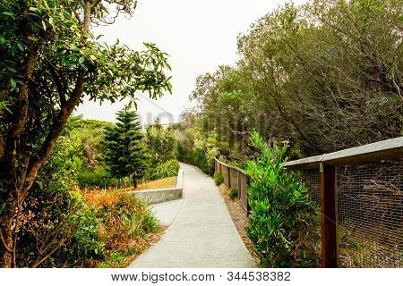 Concrete Forest Walking Path To The Gap Ocean Cliff At The Watsons Bay Of Sydney