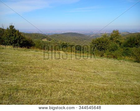 Landscape Of Slope Fruska Mountains In Serbia In Early Autumn. Steep Slope After Haymaking. Dry Gras