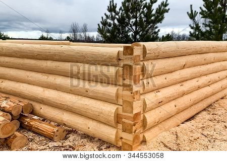Drying And Assembly Of A Wooden Log House At A Construction Base. Preparation Of Logs For The Assemb