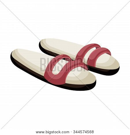 Summer Sandal Vector Icon.cartoon Vector Icon Isolated On White Background Summer Sandal .