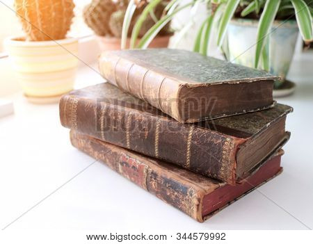 Three vintage books on a windowsill in the sunlight