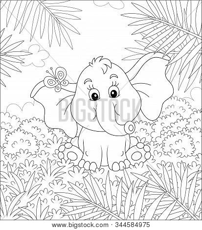 Little Baby Elephant Sitting On Grass And Playing With A Small Butterfly Against The Background Of P