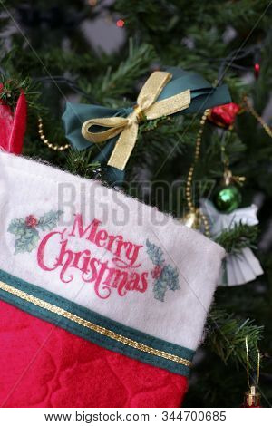 Chirstmas Groove Decorate On Christmas Tree With Golden Ribbon
