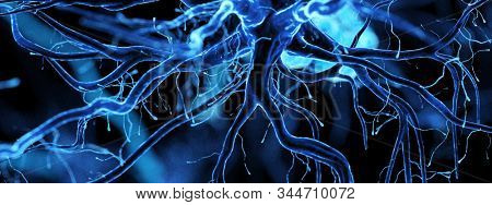 3d rendered illustration of a human nerve cell