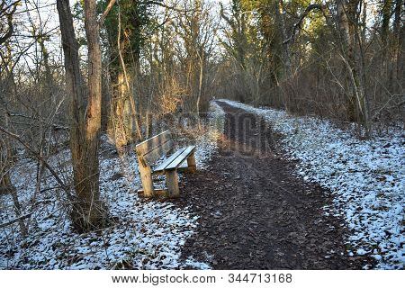 Wooden Bench By A Winding Footpath With The First Snow In A Deciduous Forest
