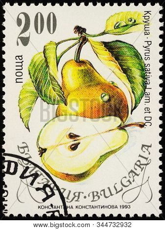 Moscow, Russia - January 08, 2020: Stamp Printed In Bulgaria Shows Pear (pyrus Communis), Series