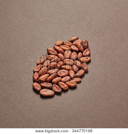 Freshly dried natural cocoa peas in the shape of big bean on a brown background with soft shadows, copy space.