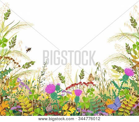 Horizontal Border With Autumn Meadow Plants And Insects. Floral Frame With Fading Grass, Colorful Wi