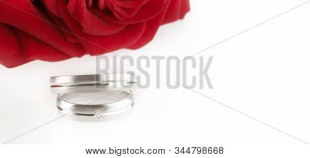 Red Rose On White Table With Two Silver Wedding Rings, Ready To Get Married.