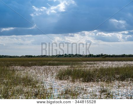 Landscape Of Everglades Saw Grass, Water, And  Stormy   Clouds In Everglades National Park, Florida,