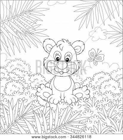 Little Lion Playing With A Small Butterfly Against The Background Of Palm Branches And Bushes Of Sav