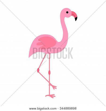Vintage Flamingo, Great Design For Any Purposes. Beautiful Poster For Celebration Decoration Design.
