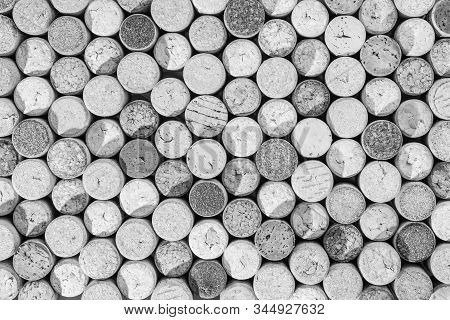 Black And White Random Selection Of Used Wine Corks, Wall Of Used Corks, Wine Corks Background, Top