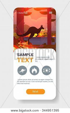 Jumping Wild Animal Kangaroo Forest Fires Dangerous Wildfire Bush Fire Burning Trees Natural Disaste