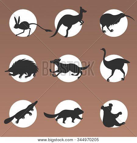 Set Cartoon Endangered Wild Australian Animals Tasmanian Devil Echidna Dingo Jerboa Ostrich Kiwi Pla