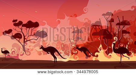 Australian Animals Silhouettes Running From Forest Fires In Australia Wildfire Bushfire Burning Tree