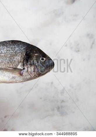 Recipe Dorado Fish сooking Ingredient Fishmenu Fishing