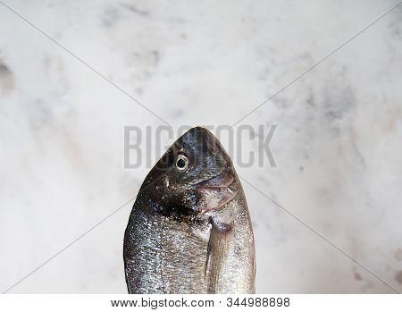 Seafish Fishoil Balancednutrition Healthyfood Vitamins Antioxidants Dietetics Balanced