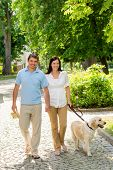 Couple in love walking Labrador dog in park sunny day poster