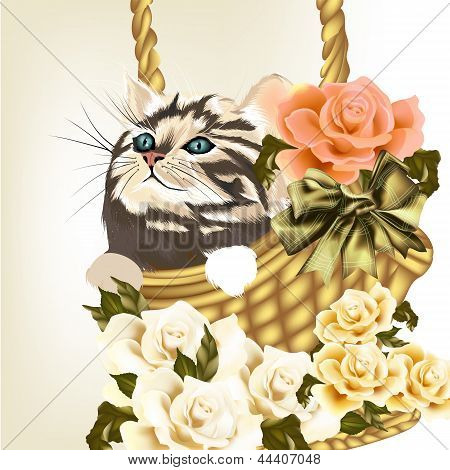Beautiful Greeting Card With Little Cute Striped Cat Sit In Basket With Roses