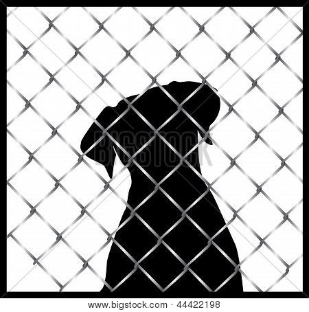Black dog silhouette behind fence
