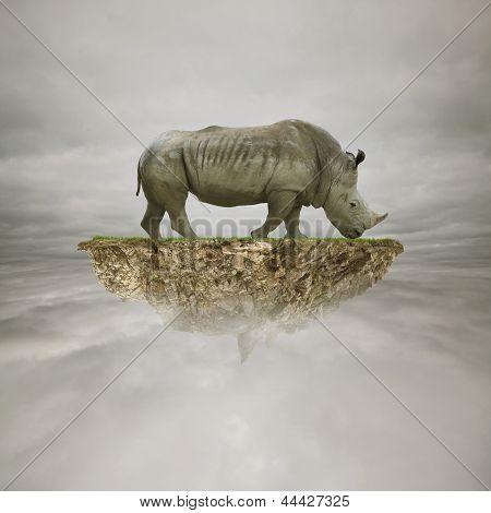 Rhino On The Rock In The Sky