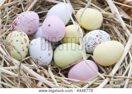 Nest Of Coloured Eggs