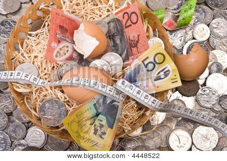 Tightening The Budget - Nest Egg