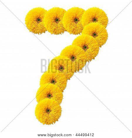 Decimal Cipher Of Flowers