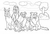 Black and White Cartoon Illustration of Cute Purebred Dogs or Puppies Group against Rural Landscape or Park Scene for Coloring Book poster