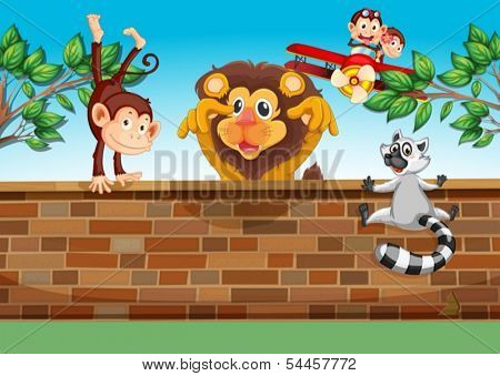 Illustration of the animals playing at the gated backyard