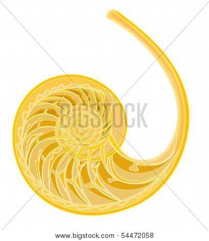 Seashell Spiral.eps