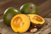Peruvian fruit called Lucuma (lat. Pouteria lucuma) which has a dry sweet flesh and is mostly used to prepare juices milkshakes yogurts ice cream and other desserts (Selective Focus Focus on the standing lucuma half) poster