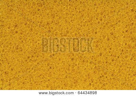 Sponge, Porouse Foam Texture Background, Bubble Macro Of Fungous Spong Bast Fiber