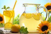 Citrus lemonade,summer drink. poster