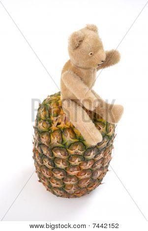 Pineapple teddy