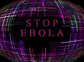 Purple abstract globe shape on black background with text.Ebola Virus Epidemic concept.Digitally generated image. poster