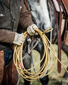 Cowboy coiling up his rope after having roped an animal, with his horse in background poster