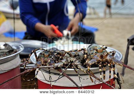 Lobsters At The Beach